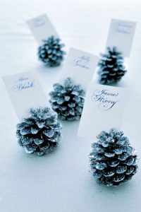Fir Cone Place cards